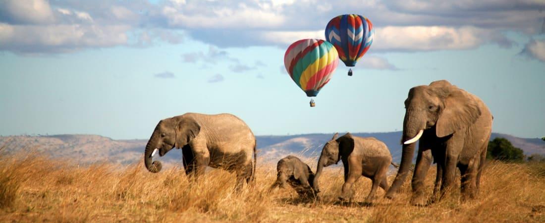 African travel deals