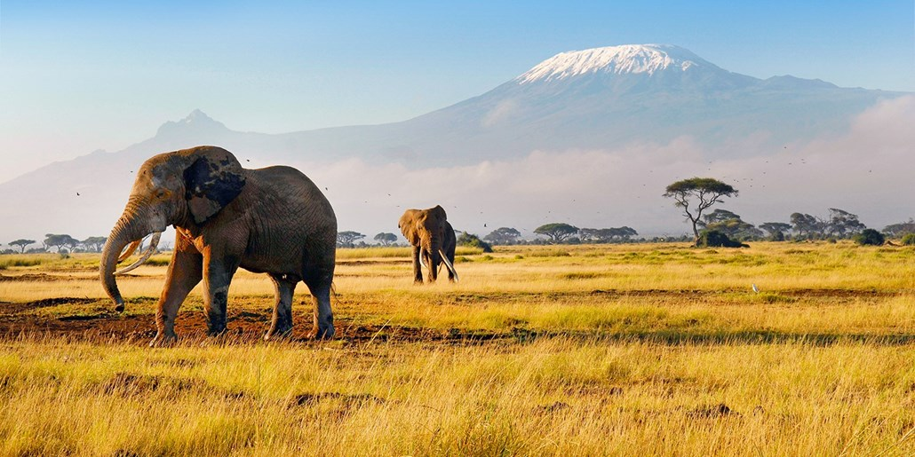 Africa vacation package deal december 2017 best travel for Best vacation deals in december