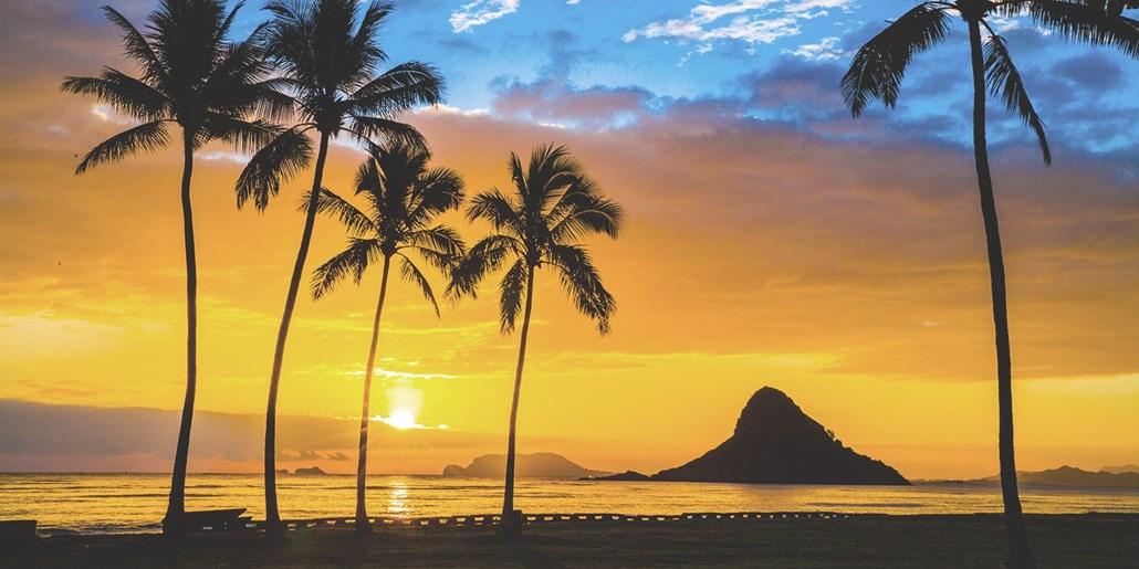 Hawaii Hotel Deals Best Travel Deals